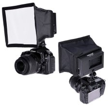 Neewer CN-160 video lights with softbox.