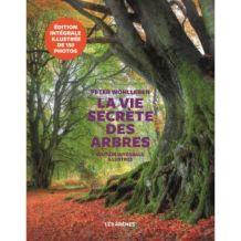 La vie secrète des arbres, couverture du livre