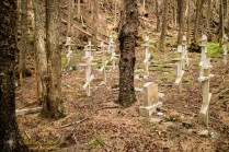 Funter Bay Cemetery