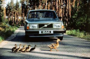 Der Klssiker: Volvo 244 GL Bild: Volvo Cars