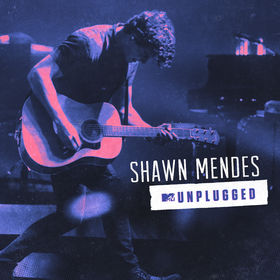 Shawn Mendes Unplugged