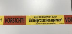 Eichenprozessionsspinner sind wieder da. Foto: Stadt Nordhorn