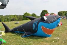 Fliegende Fische über dem Speichersee Geeste - Drachenfest mit Zuschauerrekord - Foto: Gemeinde Geeste