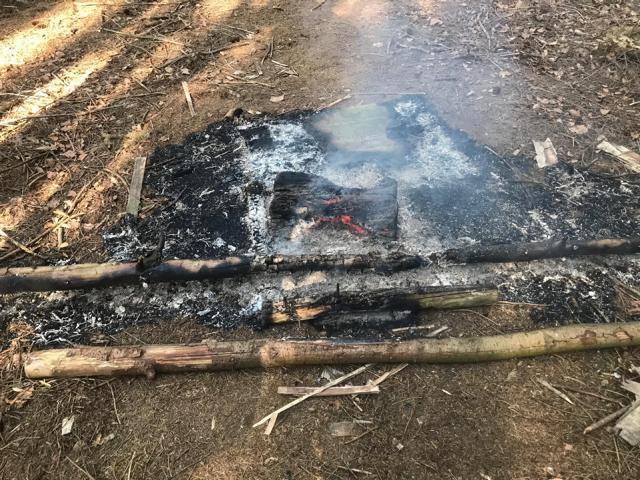 Das Feuer mitten im Wald nahe dem Sögeler Schützenplatz konnte schnell gelöscht werden. Foto: SG Sögel/Feuerwehr