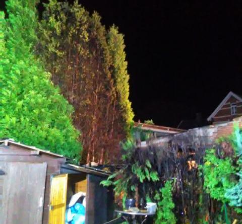 Neuenhaus - Brennende Hecke entwickelt sich zum größeren Brand - Foto: Feuerwehr Neuenhaus