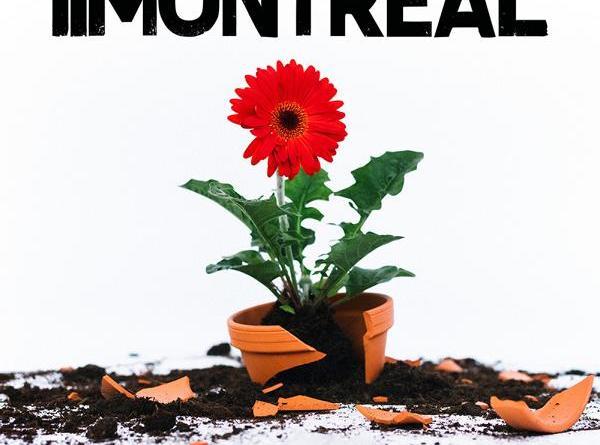 """15 Jahre Montreal - Das neue Album """"Hier und heute nicht"""" wir haben rein gehört"""
