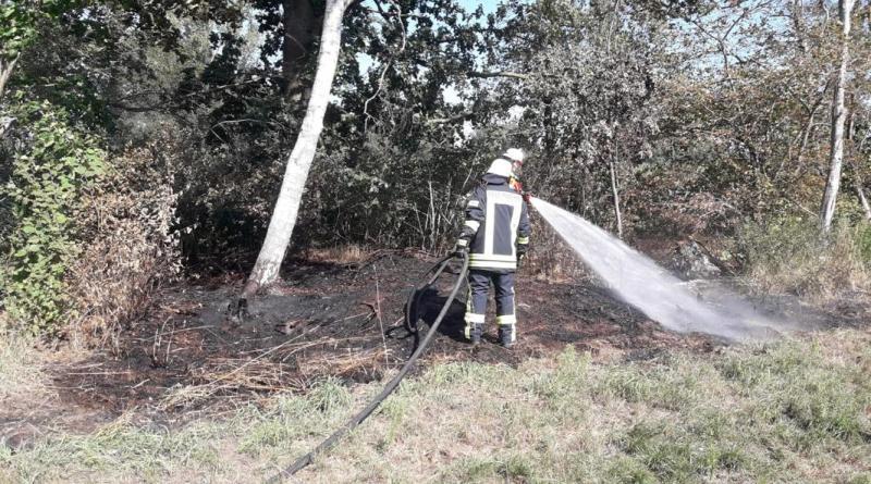 Feuerwehr Dersum löscht Flächenbrand in Hasselbrock - Foto: SG Dörpen / Feuerwehr