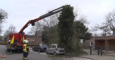 Lingen -Baum fällt auf Auto - Foto: NordNews.de Übersicht