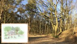 Waldkindergarten startet im August - Vorbereitungen laufen Hochtouren – Anmeldungen bereits möglich - Foto: Stadt Meppen