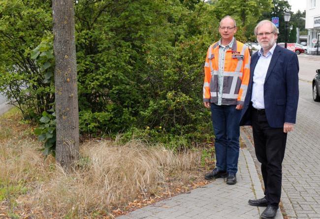 Grünflächenpflege im Stadtgebiet - Foto: Stadt Papenburg