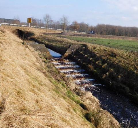 """""""Weiterer wichtiger Baustein im Gewässerschutz"""" - Fördermittel für Renaturierung der Nordradde erhalten – Start in Sögel"""
