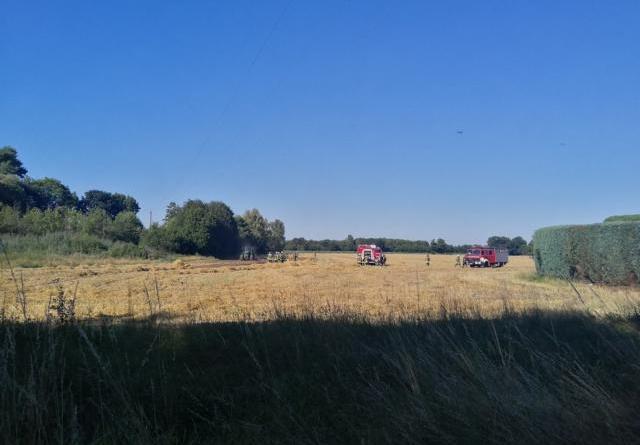 Bawinkel - Feuer auf Getreidefeld - Foto: NordNews.de