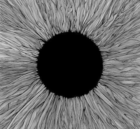 """VOLA mit offiziellem Video zu """"These Black Claws (feat. SHAHMEN)"""" - neues Album """"Witness"""" am 21. Mai"""