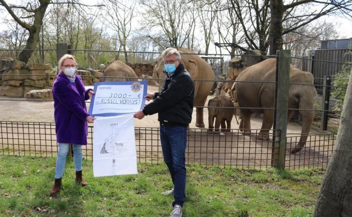 """Monika Bergmann-Rasch (links), von den """"Leonia"""", übergibt an Dr. E.h. Fritz Brickwedde, Präsident der Zoogesellschaft Osnabrück e.V., den symbolischen Spendenscheck über 3.000 Euro, die über den Verkauf von Geschirrhandtücher mit Zoo-Motiv zusammengekommen ist. Das Geld ist für die Spendenkampagne """"Rüssel voraus!"""" bestimmt, mit der die Vergrößerung und Modernisierung der Elefantenanlage finanziert werden soll. Bildquelle: Zoo Osnabrück (Jan Banze),"""
