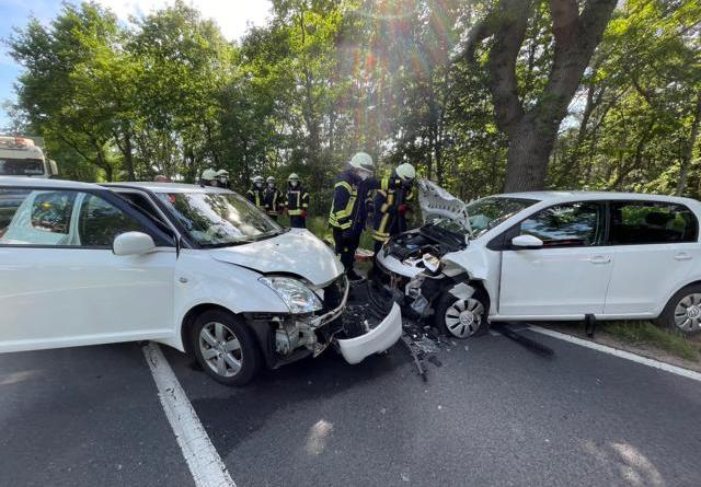 Sögel - Vier Personen bei Unfall verletzt - Foto: SG Sögel / Feuerwehr