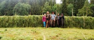 haymakingteam2014