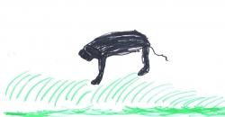 S., 8 Jahre alt