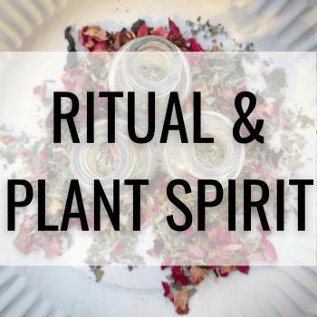 Ritual & Plant Spirit