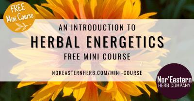 Herbal Energetics Free Mini Course