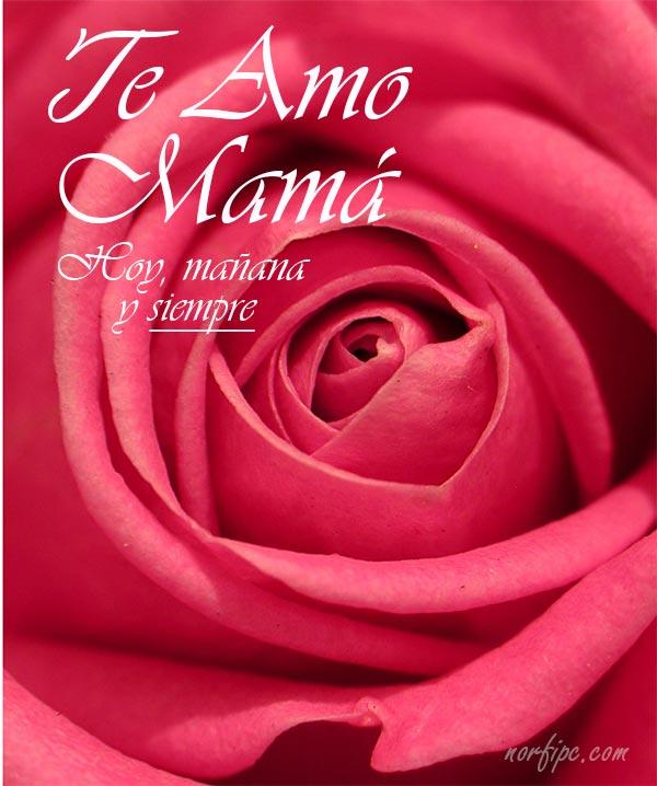 Te Amo Mamá. Hoy, mañana y siempre