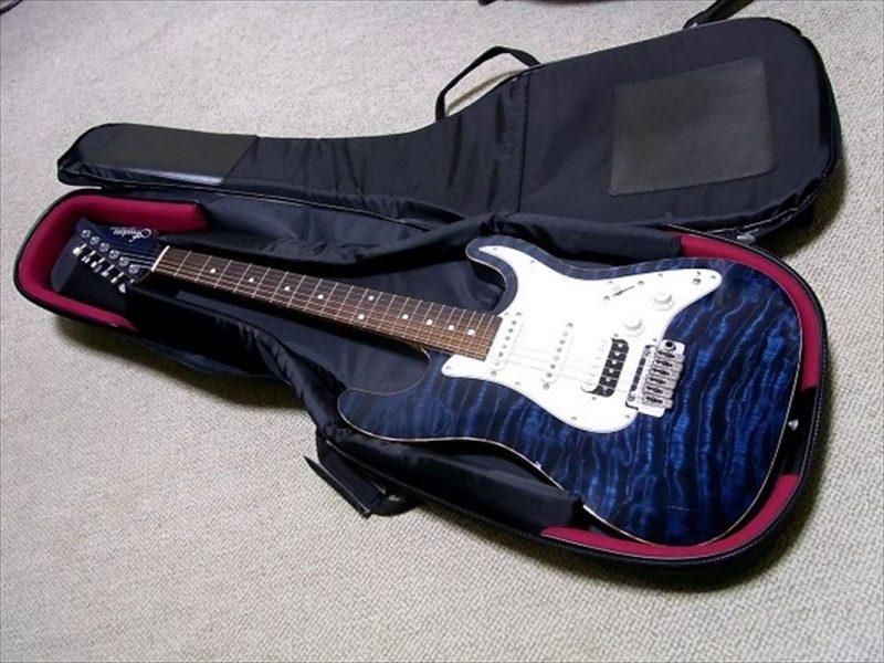 Freedom Custom Guitar Researchのオーダーギター