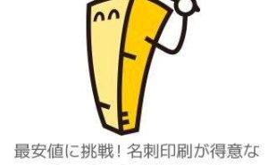 【320円(送込)】名刺を激安で購入!マヒトデザインの値段・対応が素晴らしい!【実質0円のサイトも発見】