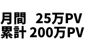 次の目標はブログの月間アクセス数30万PV!【歓喜!】ブログのアクセス数が月25万PVを越えました! 累計アクセスも200万PV達成しました!!! #ブログ