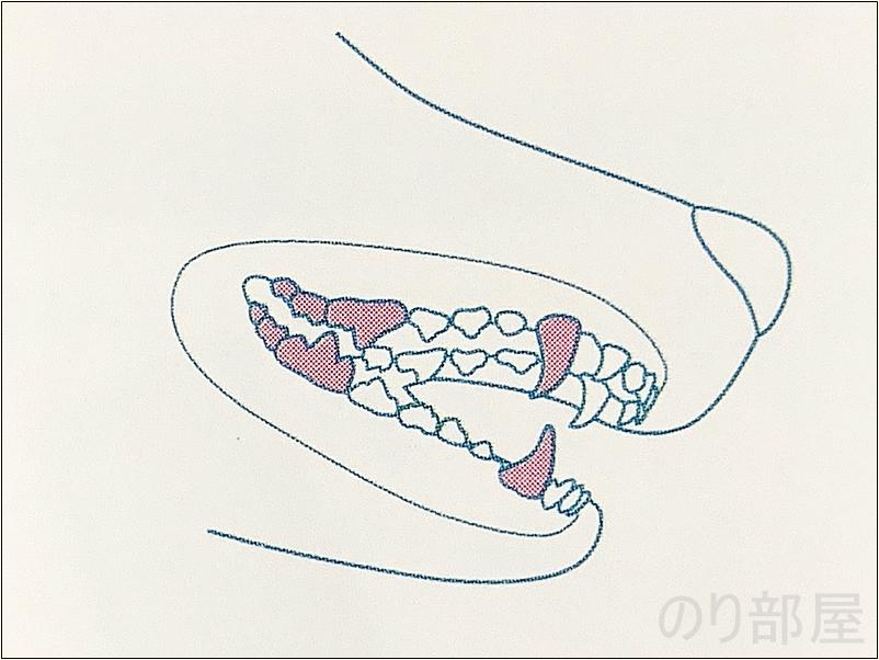 犬の歯磨きで気を付けて磨く部分。 【必見】犬の歯磨きで歯周病や病気を防ぐオススメの方法。放置すると頬に穴が空きます。歯磨きを嫌がる犬には水やご飯に混ぜて予防を!