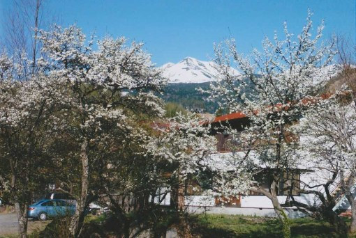 旅館金山の外観 雪の乗鞍