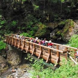 三本滝手前の橋