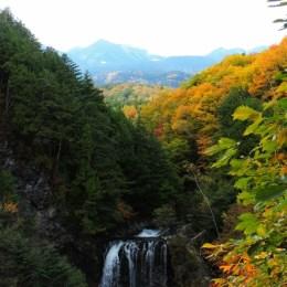 善五郎の滝の紅葉