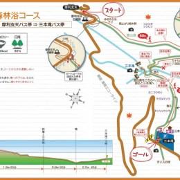 女将おすすめ 登山ガイドⅣ森林浴コース