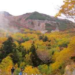 位ヶ原山荘前から見上げる紅葉風景