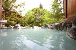 白樺の庄 温泉