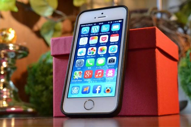 Apple純正のiPhone5sケースブラック2