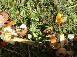 Gärtnern mit Kindern – Ohne Kompost geht im Hochbeet nichts!