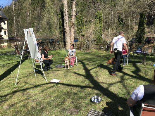 Hundehotel – Das Wetter macht's möglich – Unterricht im Garten