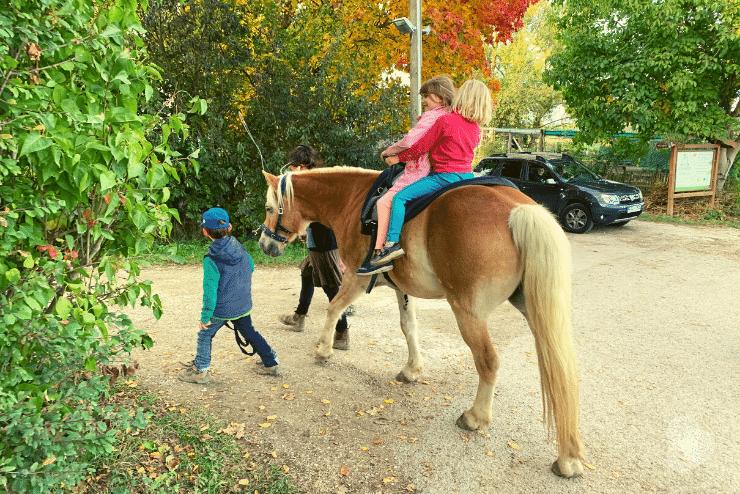 Merlin führt ein Pferd mit Kind darauf