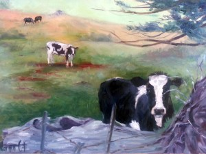 Marin Cow