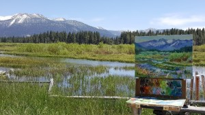 Upper Truckee Marsh Plair