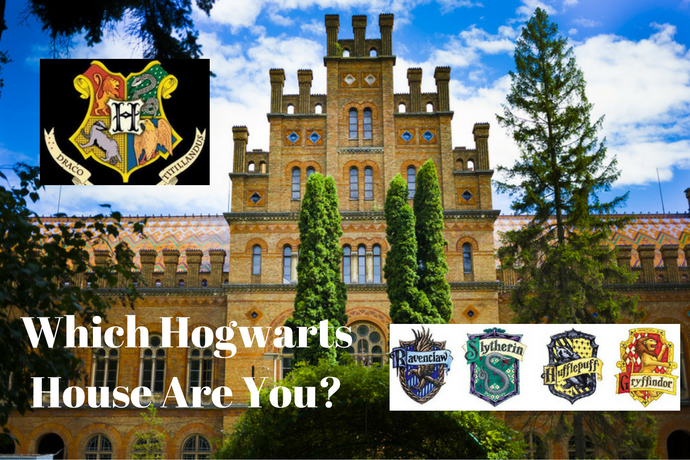 Which Hogwarts House Are You 1