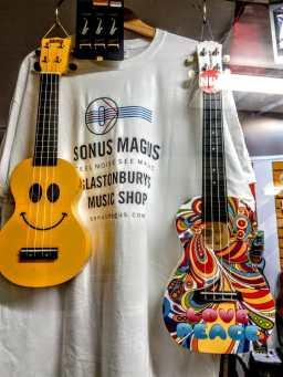 Sonus Magus Glastonbury (7)