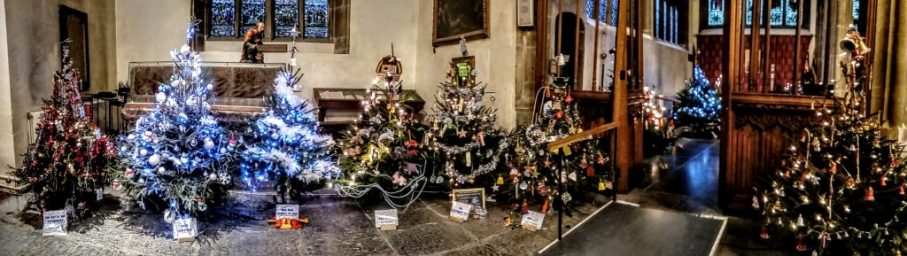 St Johns Glastonbury Christmas Trees