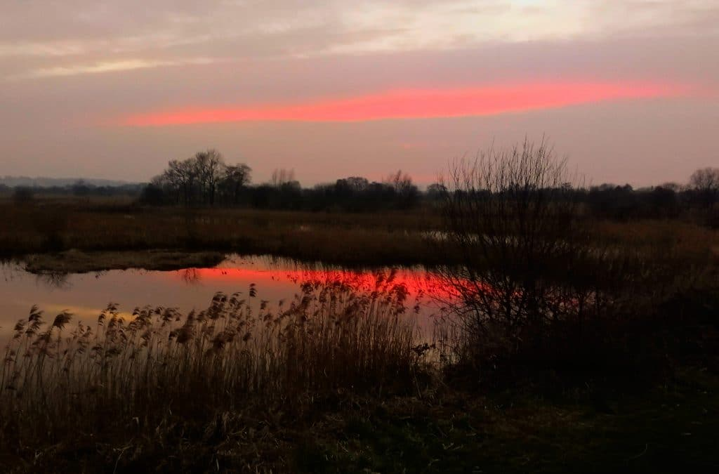 Somerset Levels at sunset