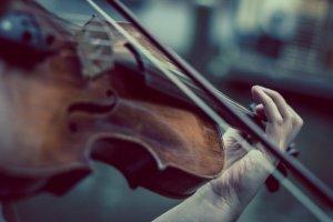 Violin Pixabay Image