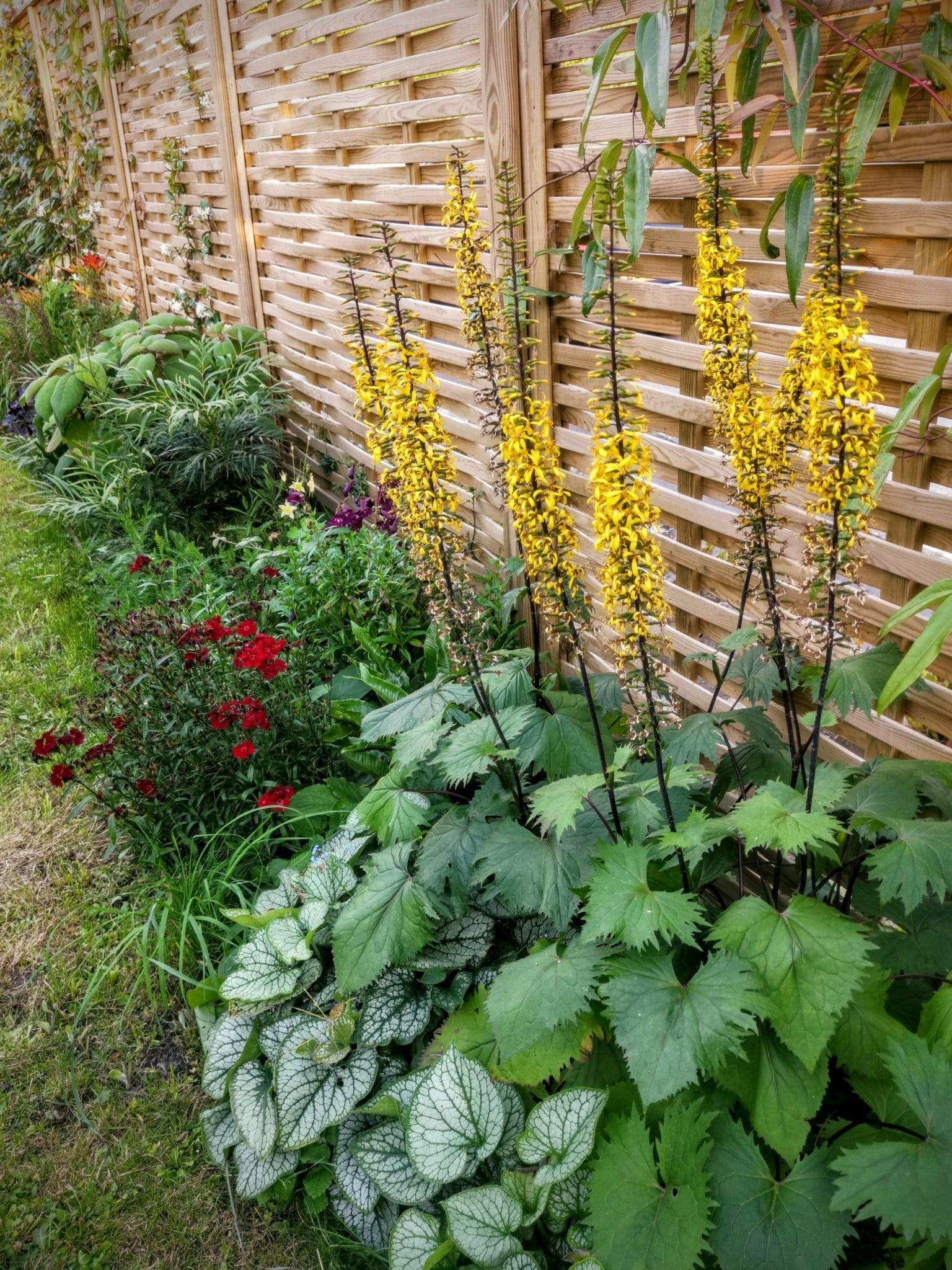 One Dod Lane Garden