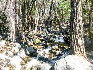 Bridalveil Creek, filled with Talus