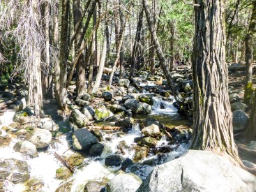 Bridalveil Creek, filled with Talus