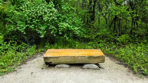 Three log benches along the trail for resting or wildlife watching