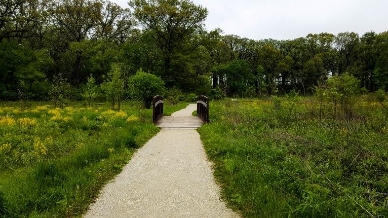 Small footbridge on the trail